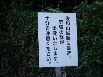 20101005_sawayama2