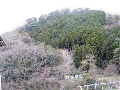 20140406_kanbei4
