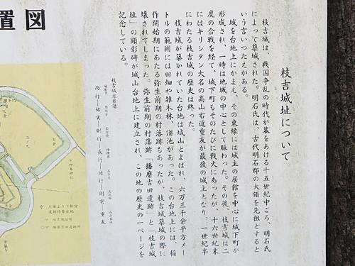 20140419_eda3