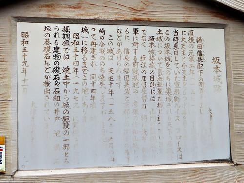20140429_sakamoto_3_1