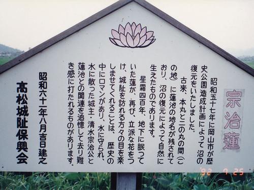 1992_hasu