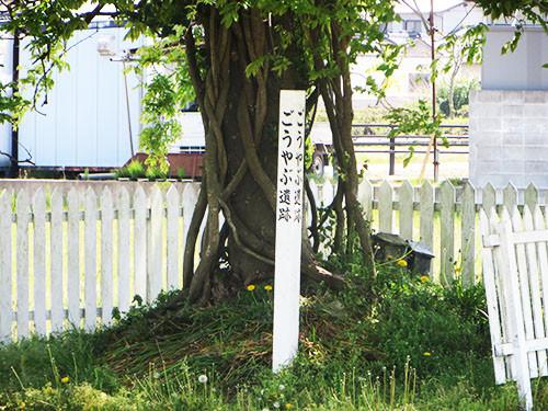 20140502_takamatu_6_14