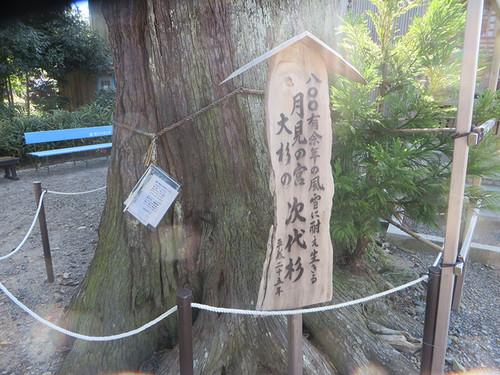 20140921_fukushima5