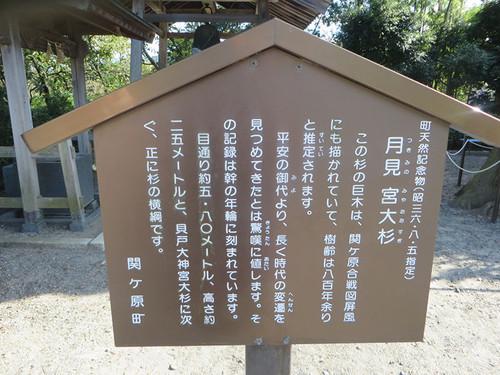 20140921_fukushima7
