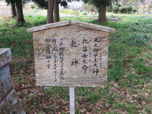 20150228_nishiwaki6