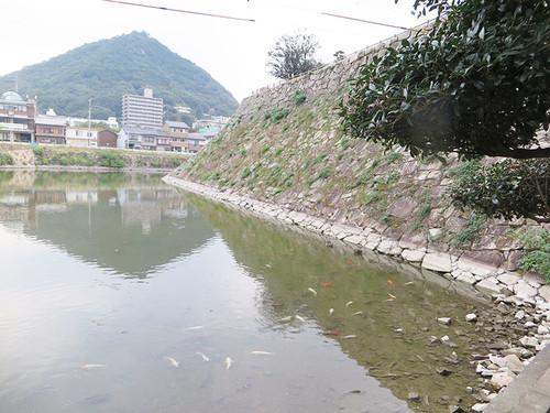20151011_shiro_03