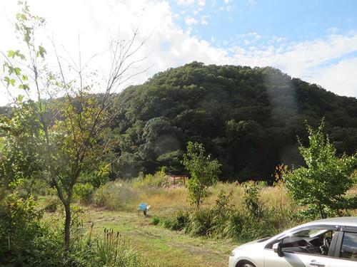 20151011_shiro_3_6