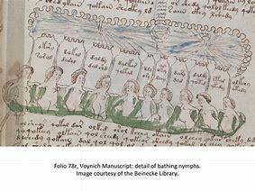 Voynich-manuscript-2