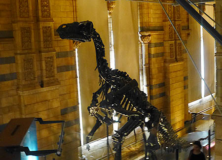 20121024_musee14_2