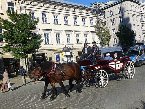 20121026_horse2