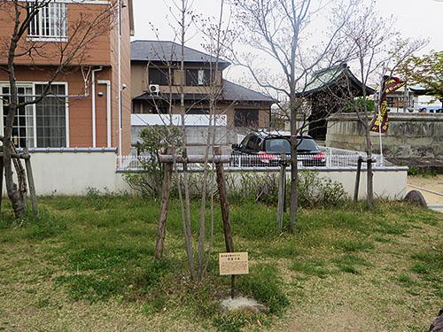 20140413_gochaku8