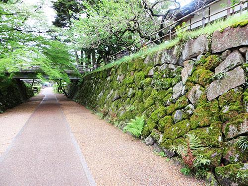 20140429_kameyama1